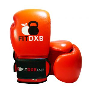 Fitdxb Boxing Gloves
