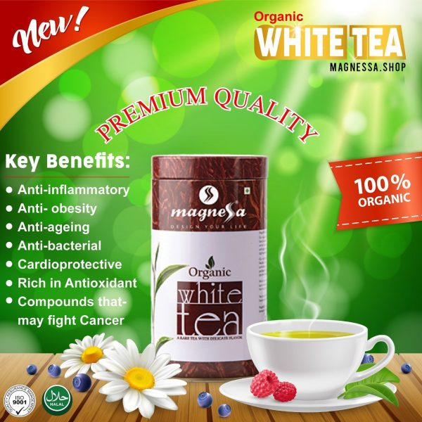 Organic White Tea - Magnessa